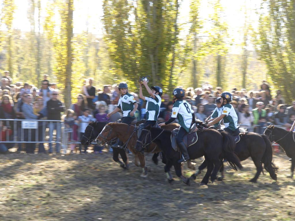 FIRA-SANT-MARTIIRA-BANYOLES-HORSEBALL